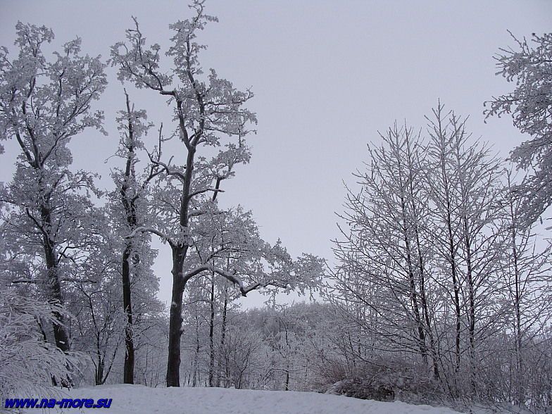 Зима на берегу Финского залива в Сестрорецке.